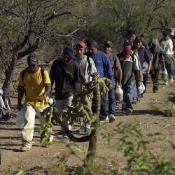Criminales se roban a los migrantes entre sí en EEUU para pedir rescate